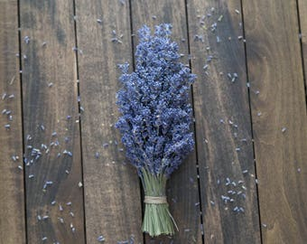 Organic Lavender Bunch // All Natural // Colorado Grown