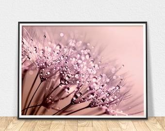 Dandelion Abstract Art - Printable Wall Art, Abstract Art Print, Abstract Flower, Abstract Floral, Digital Art, Dandelion Art Print