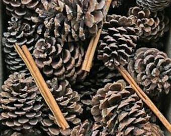 Cinnamon Scented Pine Cones with Cinnamon Sticks   Cinnamon Pine Cones   Pine Cones   Cinnamon Sticks