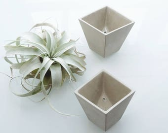 Sage Hive Planter - Set of 2 - One of a Kind