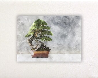 Bonsai - Watercolor prints, watercolor posters, nursery decor, nursery wall art, wall decor, wall prints | Tropparoba 100% made in Italy