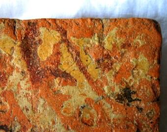 Medieval English terracotta floor tile