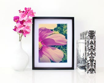 Glorious, Floral Photography, 6x8 matted print, wall art, matted photo, 6x4 print, Flower print, Flower Photo, Modern Art