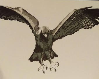 Golden eagle print from pen and ink original artwork drawing.