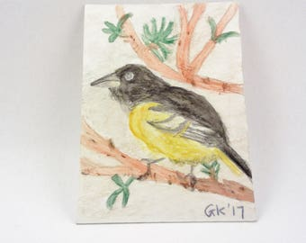 Baltimore Oriole Watercolor Painting, Original Painting, United States Bird Art