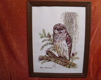 Vintage Wood Framed Owl Picture Art Print by Leland Brewsaugh 70s