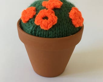 Large knitted cactus