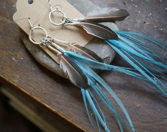 Gift from a Woodpecker - Feather Earrings - Sterling Silver