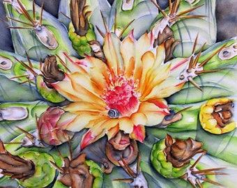 Cactus Flower: fine art