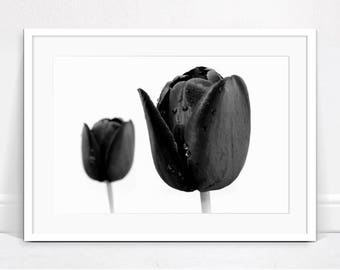 Black and White Print, Black Tulips Print, Printable Art, Digital Download, Tulip Photograph, Printable Wall Art, Poster, Black White Print