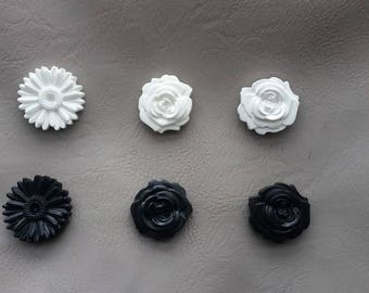 Set of 6 Roses and daisies flowers Magnets in black and white resin