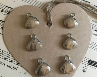 Shell charms lot