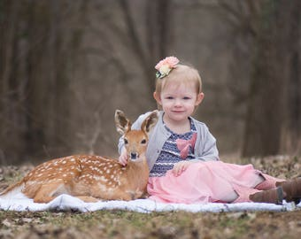 SALE! PNG Overlay of Baby Fawn - Baby Deer - PNG - deer overlay - animal overlay - Insert into your favorite photo - high resolution