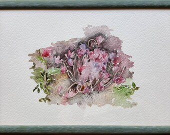 Autumn cyclamen. Watercolor and ink