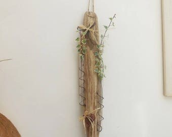 Vase wall Driftwood glass test tubes