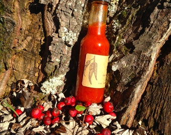 Incendiary Fire Tonic Hot Sauce