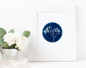 Baby's Breath - Cyanotype Sun Print, Botany Leaf Wall Art A4 Poster