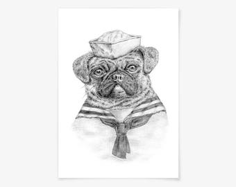 Fine art print - Pug Sailor