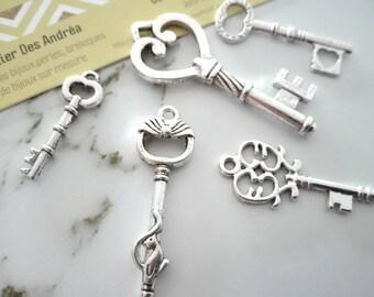 Set no. 6 ☆ / x 5 silver metal key / shapes mixtes☆