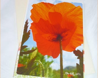 "Carte double faite main "" Coquelicot peintre "" 10,5x15cm"
