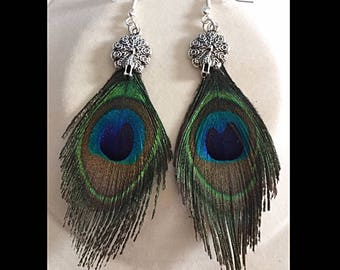 Earrings peacock feathers and Peacock charm