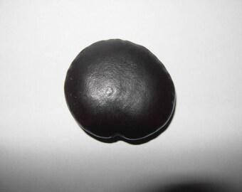 Acacia Cagay seed bead