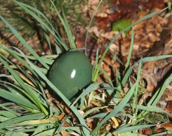 Invitation, announcement original dinosaur egg.