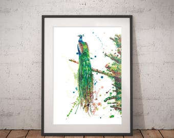 Peacock art print watercolor painting, hand-signed