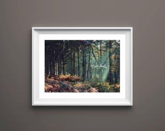 Fine art photography print Autumnal woodland landscape