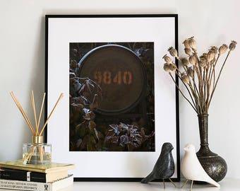 Finn Slough, Photographic Print, 11x14
