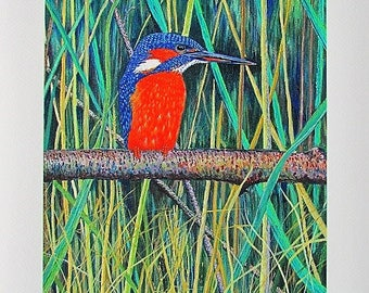 A4 Giclée Print entitled 'Kingfisher on Carlton Pool' from an original acrylic painting by artist Martin Romanovsky
