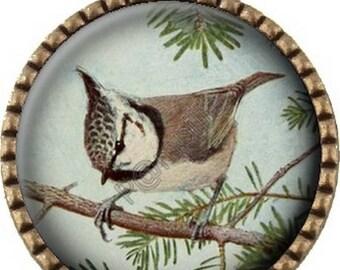 Cabochon - bronze pendant in a pine (245)