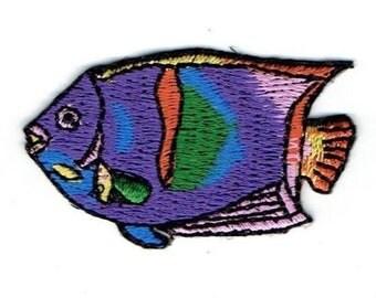 Angelfish Patch