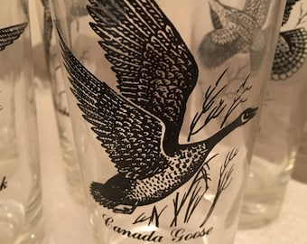 Bird-themed, 60s Tumblers - Set of Seven