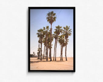 Palm tree, Summer, beach, sky, sand, photography, picture, digital download, Santa Monica, California, Los Angeles, Art, Surfing, interior