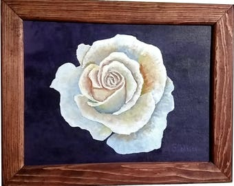 White Rose with frame