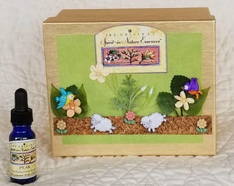 Designer Practitioner Kit - Amazing Grazing with Spirit-in-Nature Stock Concentrates