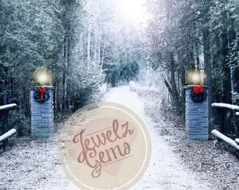 Christmas Pathway Digital Backdrop, Christmas Pathway Digital Background, Winter Pathway Digital Backdrop, Winter Pathway Background, Snowy