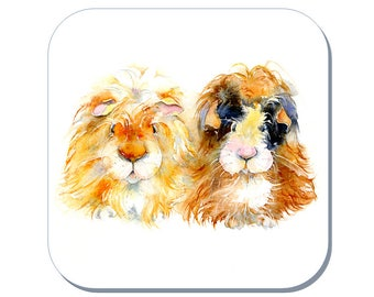 Bubble and Squeak - Guinea Pig Coaster (Corked Back). From an original Sheila Gill Watercolour Painting