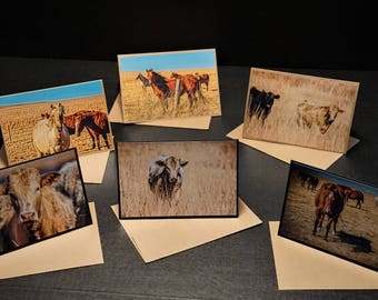 Home On The Range Photo Card Set of 6