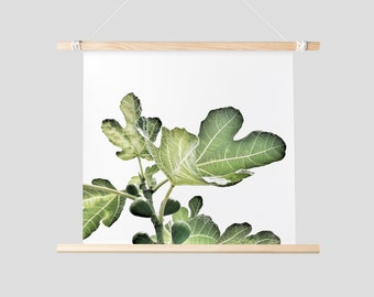 Fig Print, Printable Wall Art, Green Leaf Print, Digital Photography, Fig Leaf, Wall Decor Bedroom Fig Tree Print Fig Leaf Print Green Print