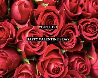 Funny Valentine's Day Card - You'll Do