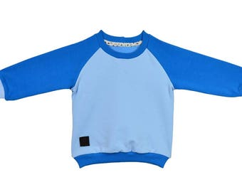 Sweatshirt, cotton, blue, hoodies, sizes 6 months - 5 years, for a girl, for a boy,