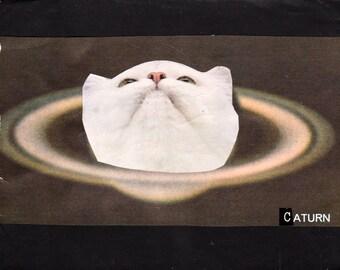 Caturn Too CAT ART PRINT