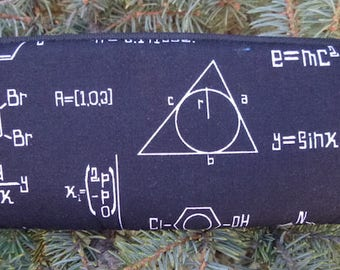Math glasses case, padded zippered glasses case with d-ring, Math Medley, The Spex