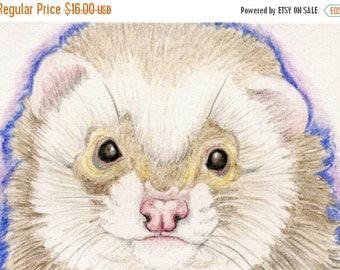 Dog Days of Summer ACEO ATC Ferret  Drawing Original Wildlife Pet Art-Carla Smale