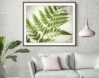 Botanical Print Fern Wall Art Art Print Fine Art Photograph Green Fern Leaf Nature Print Minimalist Nature Art - Fern