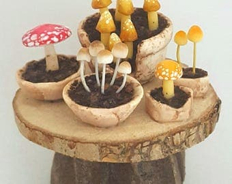 1/12TH scale - rustic potting table with a selection of fairy poisonous mushrooms