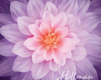 "Supernova Flower Orchid Dream Big Digital 43"" Fabric Panel"