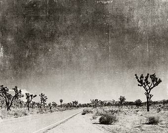 black & white photography, Palm Springs, Joshua Tree, desert, travel landscape, national park, 8x10 5x7 print